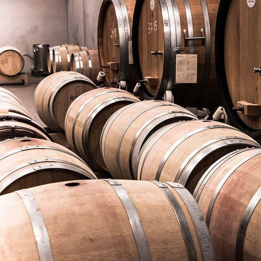 Settore di applicazione prodotti Tecnoklima - cantine vinicole