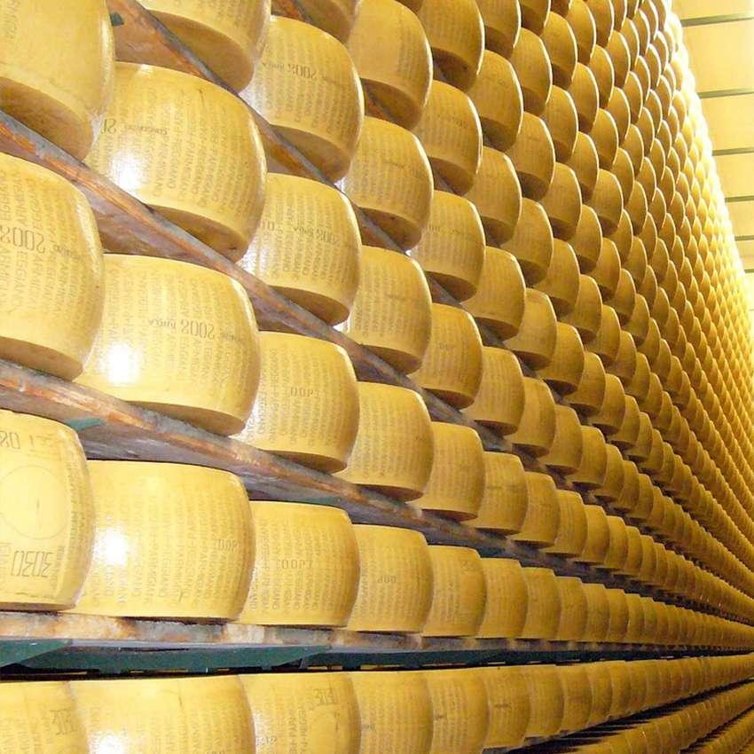 Settore di applicazione prodotti Tecnoklima - stagionatura formaggi