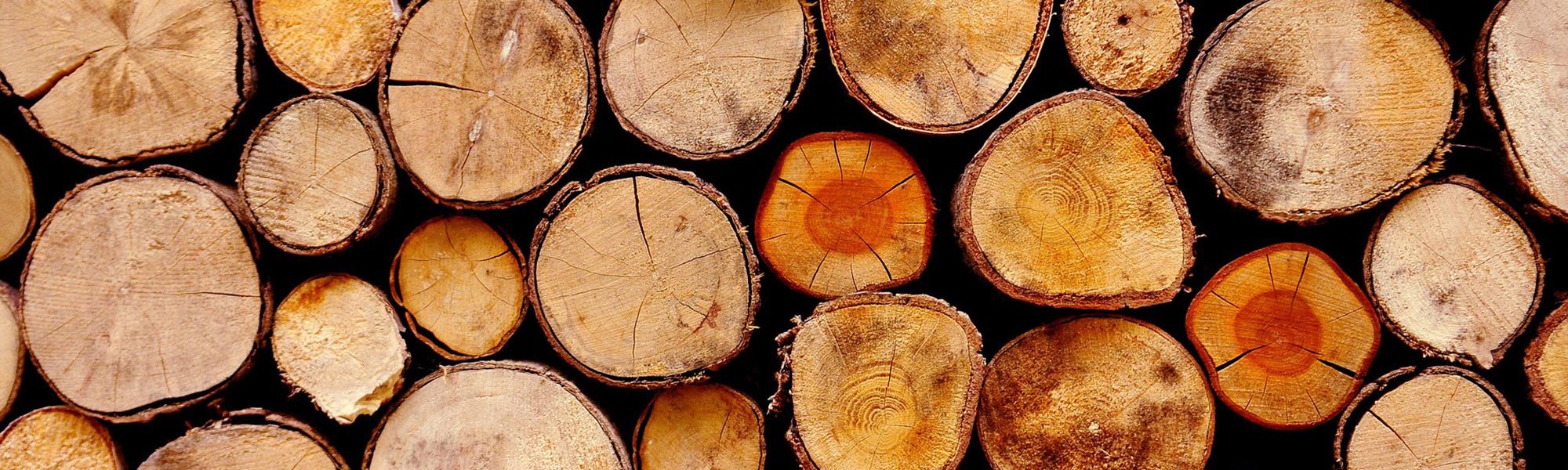 L'umidità e il legno nei depositi di legname