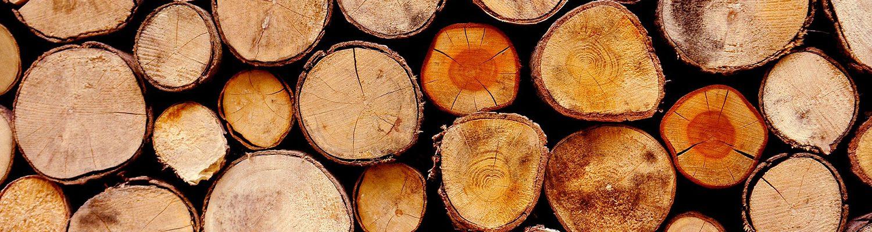 umidità-legno